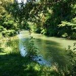 Fröttmaninger Berg und Nördliche Isarauen: MTB-Runde für den Sommer in München