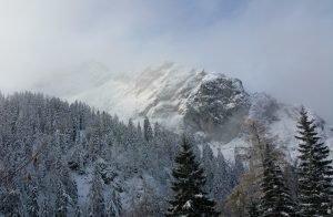 streicher_berg
