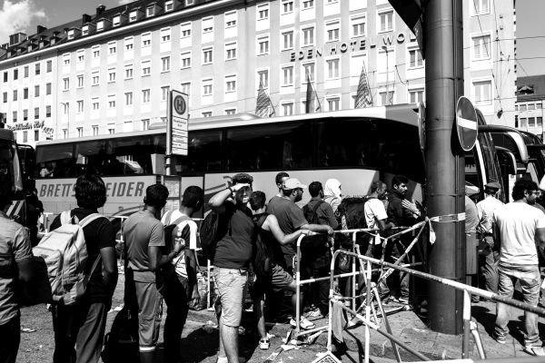Bus_Sina Beckstein