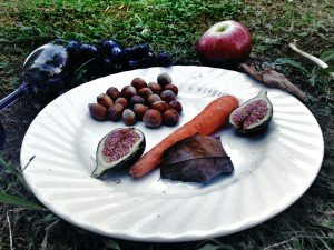 Mucbook: Interkulturelles Picknick am 16.9. am Odeonsplatz in München. Teller mit Feigen, Nüssen und Karotten.