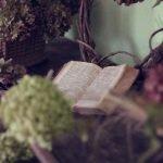 bookuck! – Tipps für einen spannenden (Lese-) Sommer
