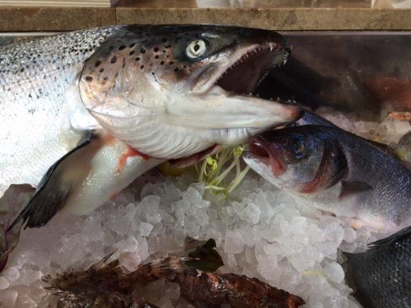 Mucbook: Popup Restaurant RiminiRimini im Eataly, Fisch