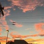 9 Weisheiten aus dem Leben einer Wohnungssuchenden