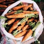 Lebensmittelrettung in München: Zweite Chance für Sushi & die krumme Möhre