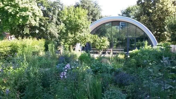 Der Generationengarten im Petuelpark bietet Milbertshofenern Platz zum Gärtnern