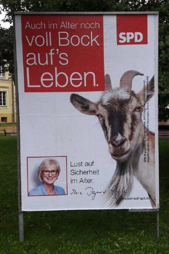 Ziegler SPD