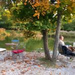 Gans am Wasser – auch im Herbst