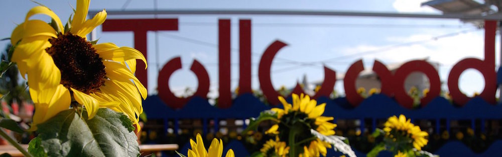 Tollwood-Sommer-30-jahre-jubiläum