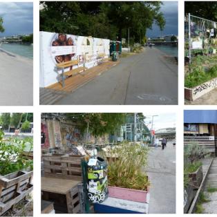 Umkämpftes Grün: Flächennutzung zwischen wachsender und essbarer Stadt