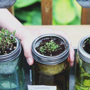 5 spannende Freizeittipps, mit denen du der Umwelt Gutes tust