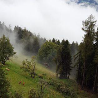 Wolkennächte: ein Wochenende im Biohotel Grafenast in Tirol