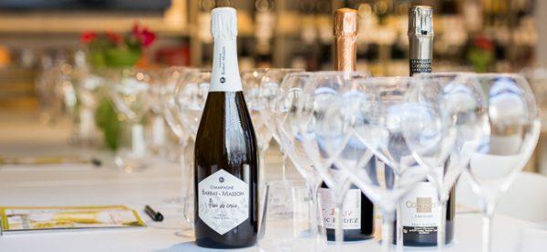 champagner-kauf-down