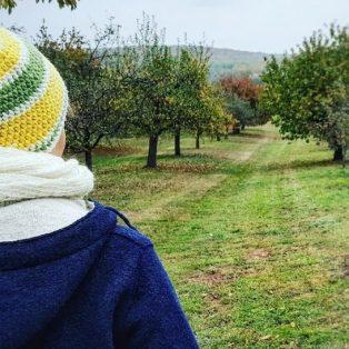 Mit Wolle gegen Mikroplastik: So geht Winterjacke auch nachhaltig