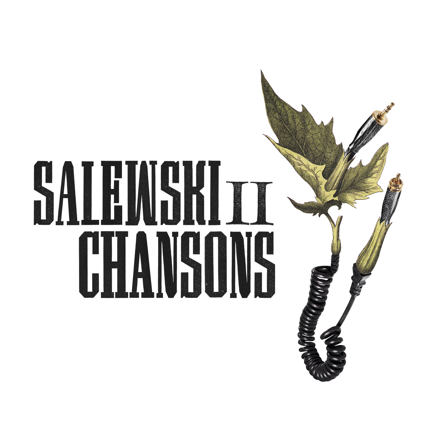 Salewski II - Chansons Cover