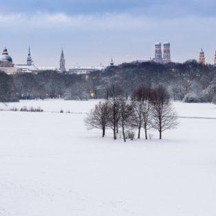 Der Englische Garten im Winter