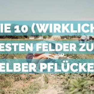 Die 10 (wirklich) besten Felder zum selber Pflücken
