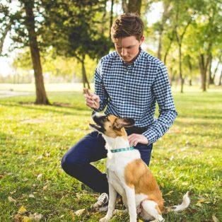 Leben mit Hund in der Stadt – wie es wirklich ist