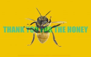 Thank you for the Honey Wouter Wirth