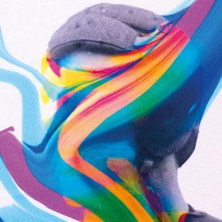 Product Vision / Illuminata Nocta Est ab 2. November im Farbenladen