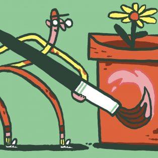 An die Pflanzen, fertig los: Komm zur Pflanzentauschparty im Clubhaus