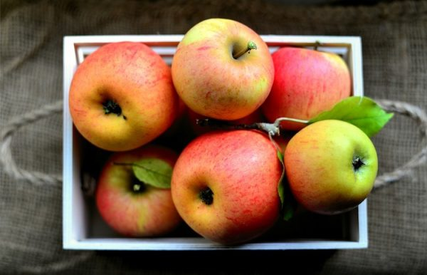 Äpfel Obstkiste Amperhof Ökokiste