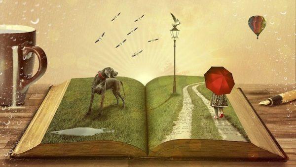 Bücher lesen und selber schreiben