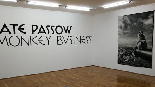 beate passow villa stuck