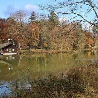 Wiederherstellung des Hinterbrühler Parks als Erholungs- und Naturraum